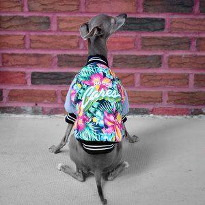 No One Cares Dog Bomber Jacket